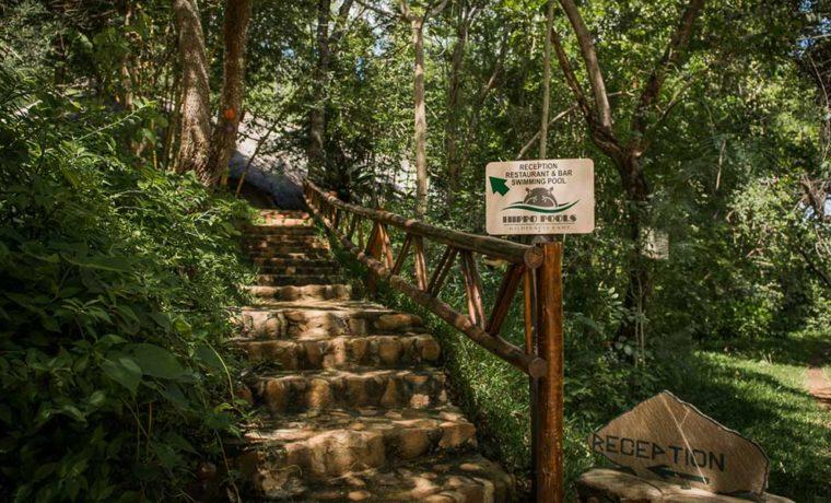 Hippo Pools Wilderness Camp Umfuridzi River