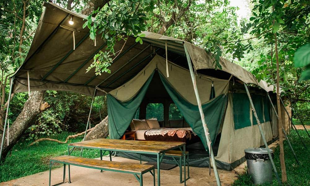 Safari Tent Hippo Pools